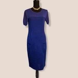 MaxMara Cobalt Sheath Column  midi dress 42 6